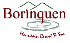 Logo Hotel Borinquen Resort in Rincon de la Vieja