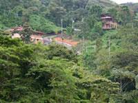 The Lost Iguana Resort