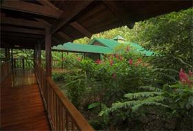Hotel Selva Verde
