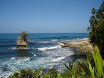 Costa Rica Caribbean Coast, Limon - Costa Rica
