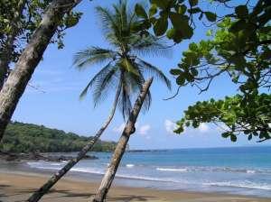 Drake Bay, Osa - Costa Rica