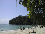 Beach in the National Park of Manuel Antonio in Costa Rica