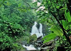 Pozo Azul Waterfalls in Dominical
