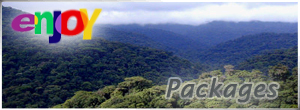 Monteverde, Monteverde - Costa Rica