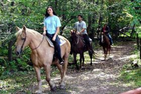 Horseback Riding to La Fortuna Waterfall Activities