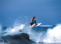 Surf Lessons Tour